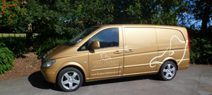 Lilly – Gold Mercedes Vito Hearse