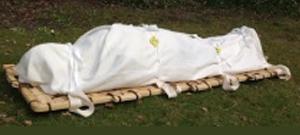 Bamboo Shroud